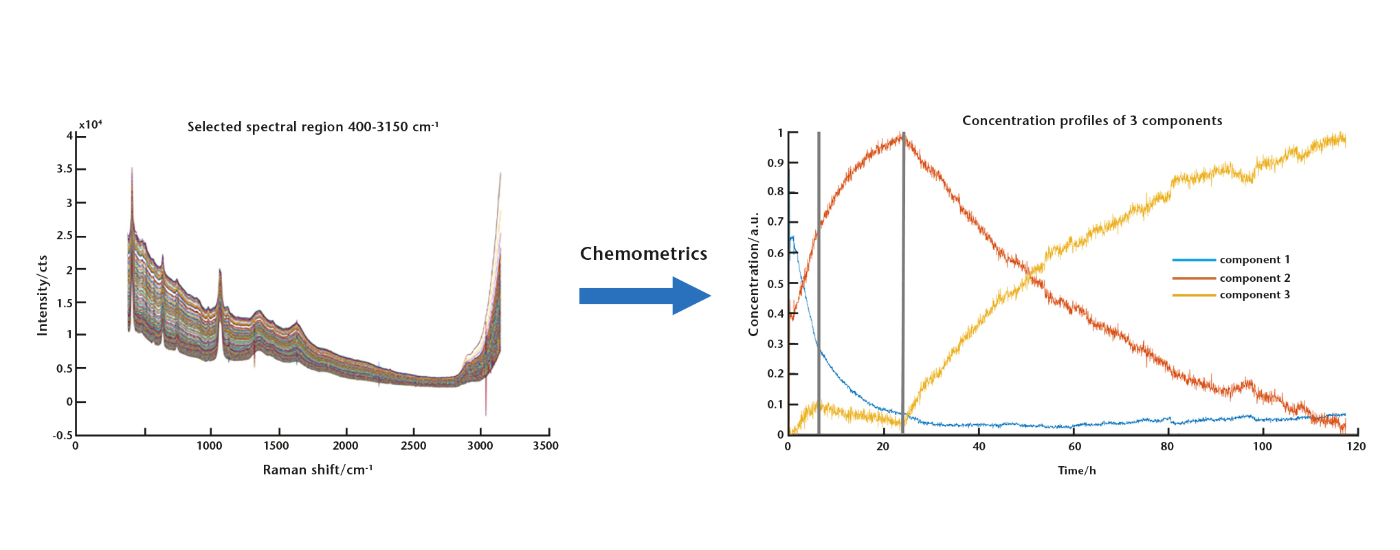 Graph showing the raw data from in-situ Raman monitoring using SCHOTT ViewPort™ for Bioprocessing on the left and Chemometric result of different component concentration from raw data of in-situ Raman monitoring using SCHOTT ViewPort™ on the right